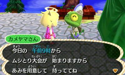 HNI_0037カメヤマ★