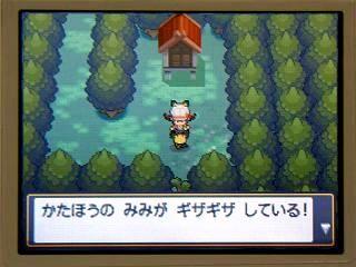 ポケモン金銀024ギザみみ1★