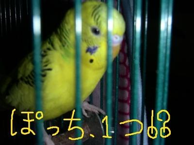 3311f951.jpg