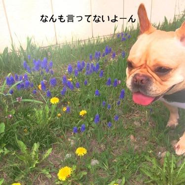 2014-05-03-02-47-58