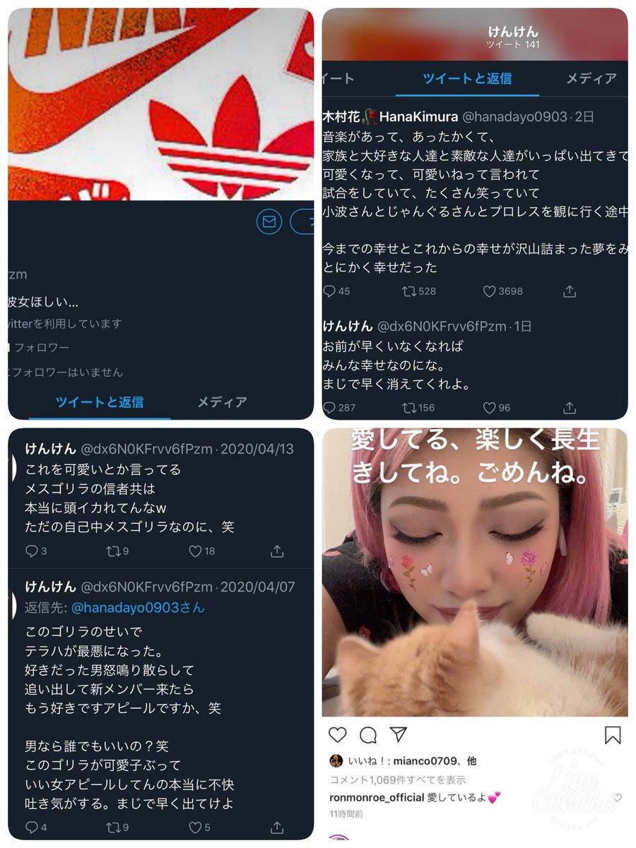 けんけん誹謗中傷 「死に追いやってしまった」「逮捕されるのが怖い」 木村花さん誹謗中傷