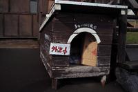 北海道その4