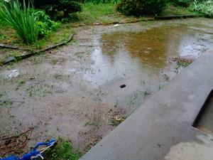 DSC02337.JPG 雨です