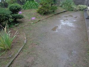 DSC04933.JPG 雨
