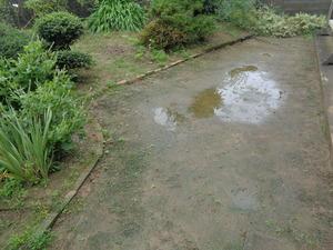 DSC04203.JPG 雨は昨夜で終わってた