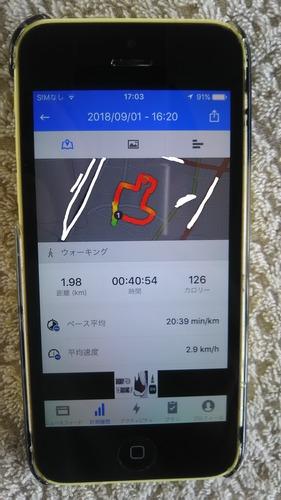 DSC_2319 - コピー_LI