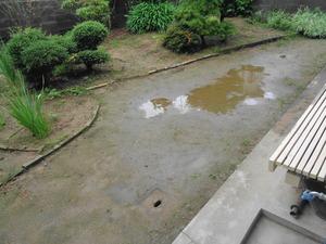 DSC00494.JPG ぴっぴ専用お散歩広場。
