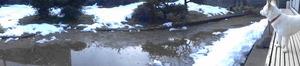 DSC07628.JPG アップ 15:01 ドッグランは水浸し  (1)