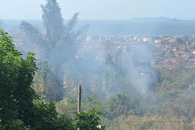 への移住 : 熱帯雨林気候帯 インドネシア・ランポン州への移住 : 熱帯