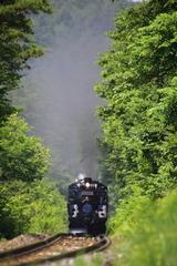 717A1204