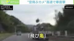 「空飛ぶカメ」高速道路で車直撃 大阪