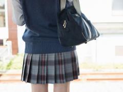 女子高生に「下半身見せろ」 LINEで裸の動画送らせた疑いの男逮捕、京都府警