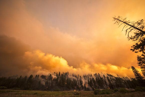 8-11-15-Fire-Web_0013