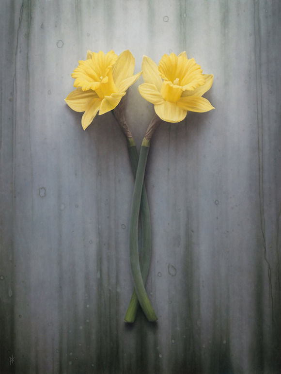 double_daffodil_by_patrick_kramerd8jiyy3