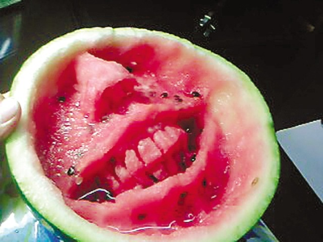 watermelon-carving6