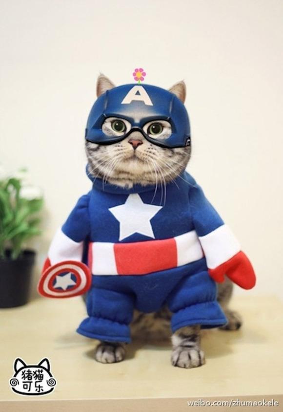 cosplay_kitty_heroes_zhumao_kele_4