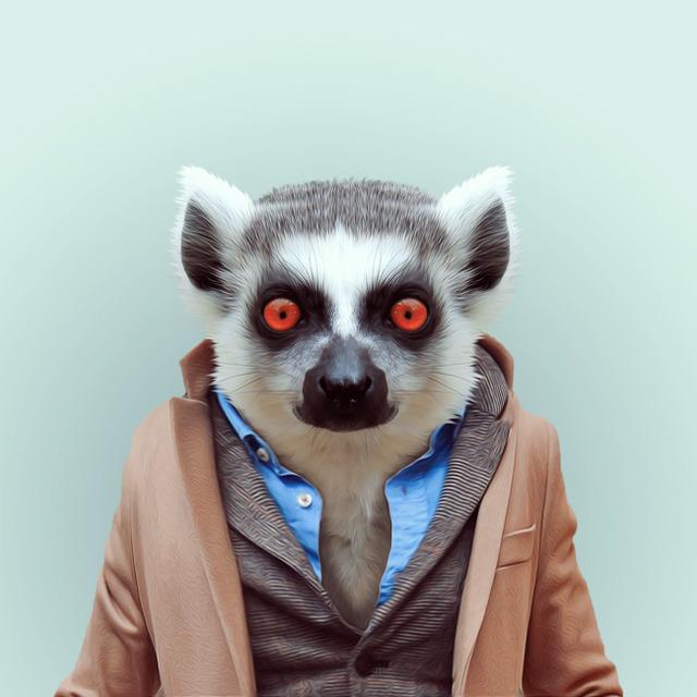 30-animal-portrait-photography