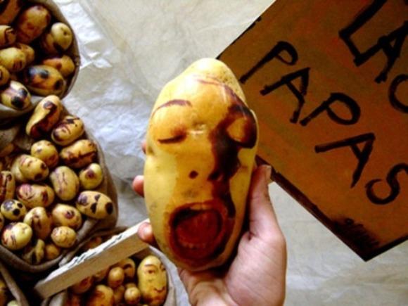 potatoportraits07