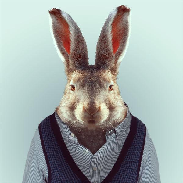 24-animal-portrait-photography