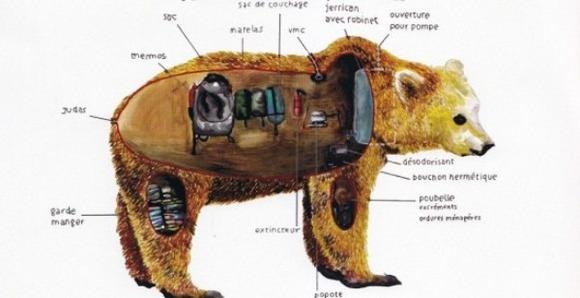 abraham-poincheval-in-skin-of-bear-2