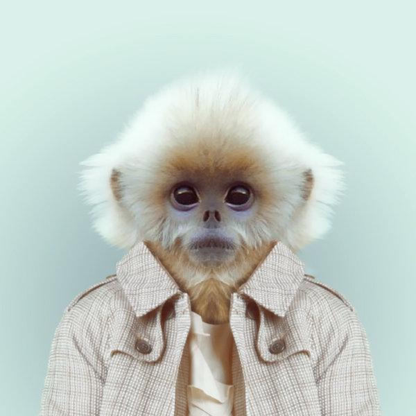 23-animal-portrait-photography