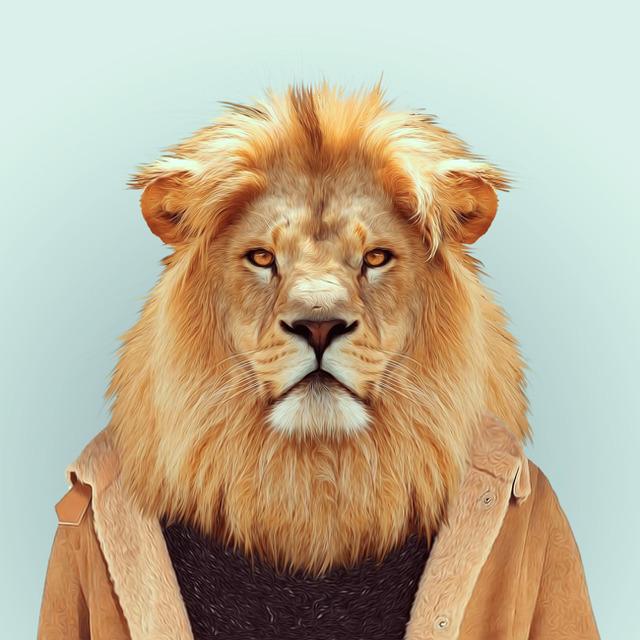 7-lion-portrait-photography