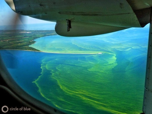 lake-erie-algae-9[5]