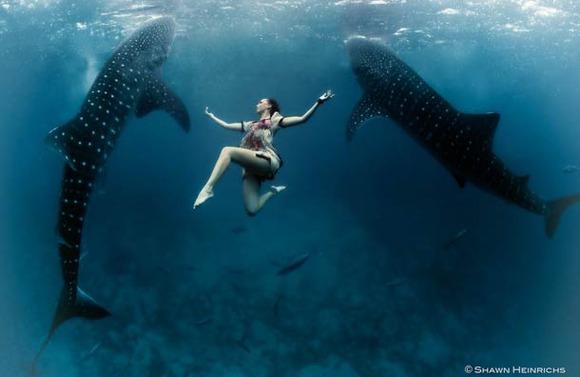 Shawn-Heinrichs-photography-underwater-13