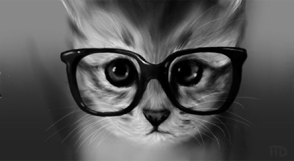 hipstercat4