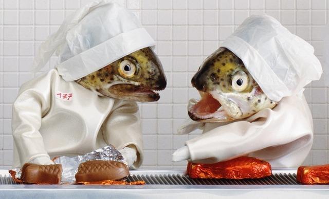 fish-art-7[6]