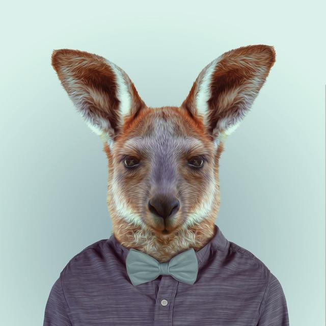 37-animal-portrait-photography