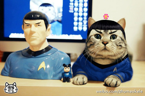 cosplay_kitty_heroes_zhumao_kele_l