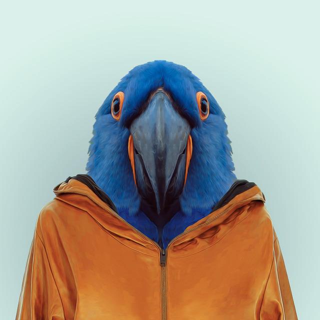 13-animal-portrait-photography