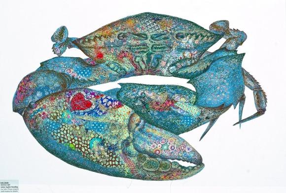 Crab1_big