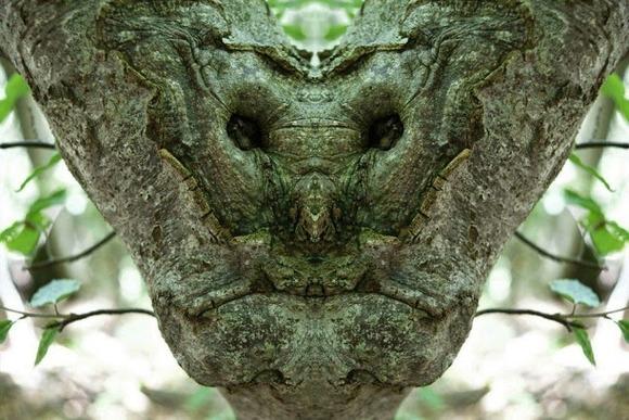 creature7