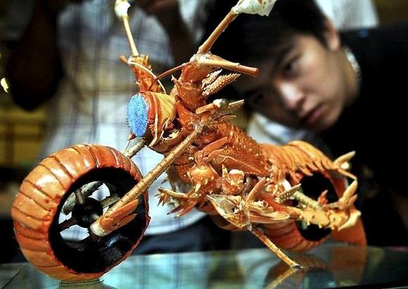 Lobster-Motorcyle-4-