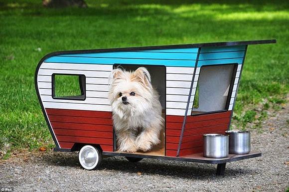 pet-camper02