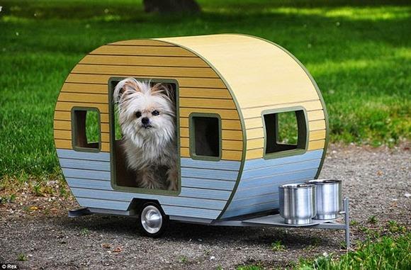 pet-camper05