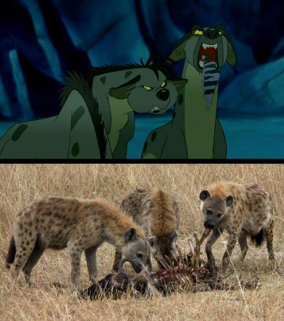 real-life-lion-king-brandon-heuser-1