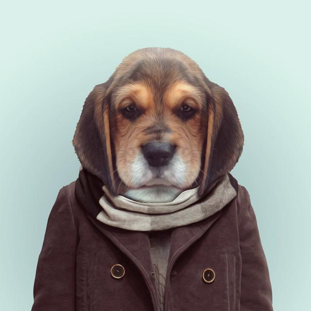 9-dog-portrait-photography