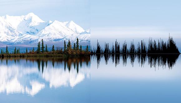 anna-marinenko-nature-sound-waves-designboom-13