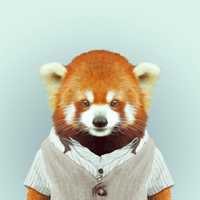 29-animal-portrait-photography