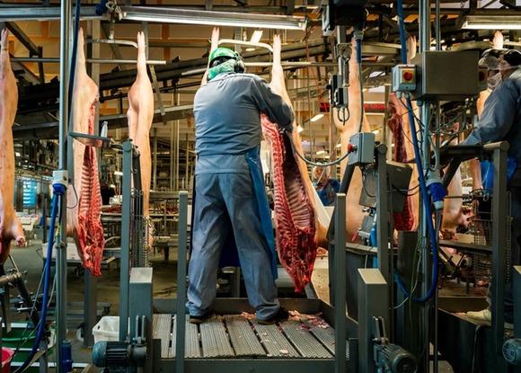 slaughterhouse-alastair-philip-wiper-3