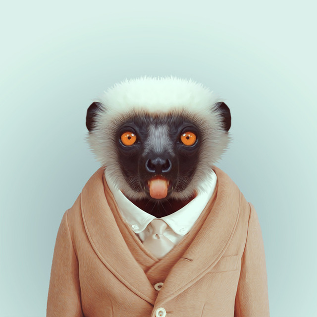 31-animal-portrait-photography