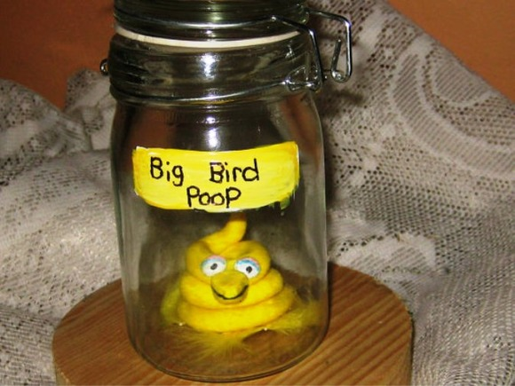 fake-poop-michelle-antoni-big-bird