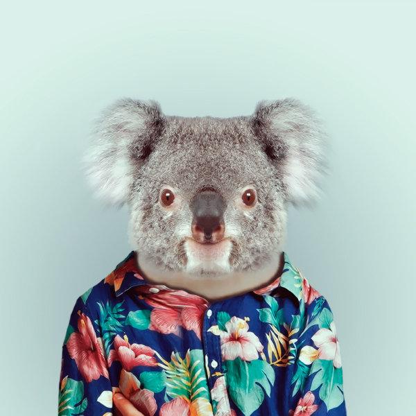 26-animal-portrait-photography