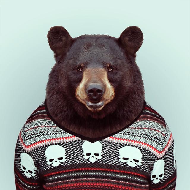 11-animal-portrait-photography