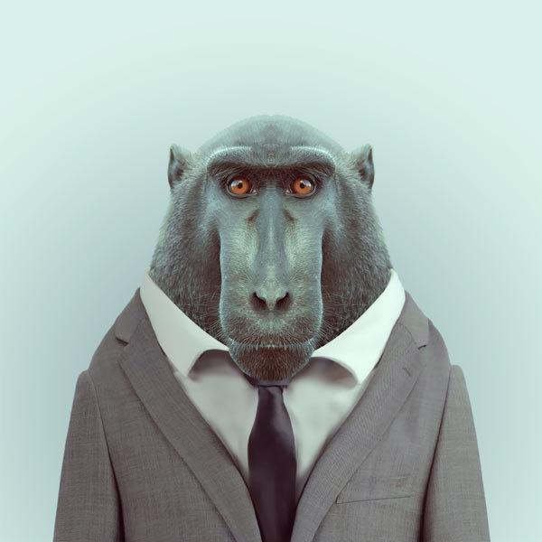 5-animal-portrait-photography