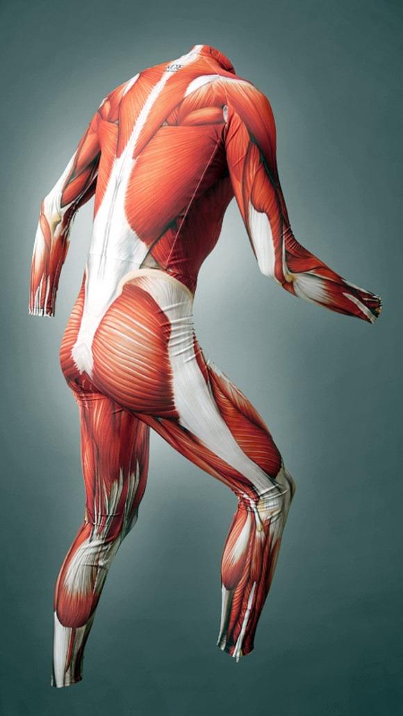 musclesuit04