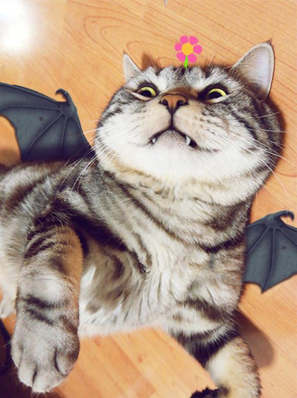 cosplay_kitty_heroes_zhumao_kele_3